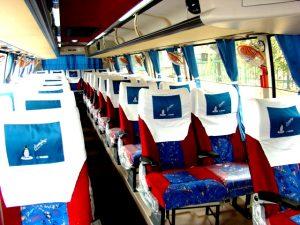 41 Seater Inside